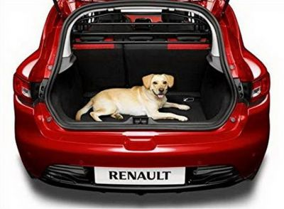 Renault Clio IV hatchback - Grilaj de separare (Renault Original)
